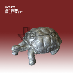 36in-turtle