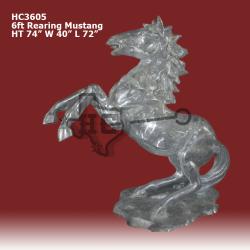 6ft-Rearing--Mustang