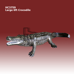 Large-6ft-Crocodile