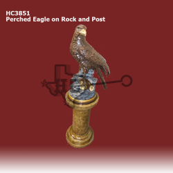 Perched-Eagle-on-Rock-on-Smooth-Pedestal-color