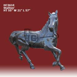 Stallion-bronze