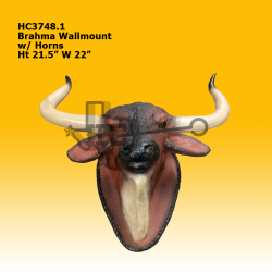 brahma-wallmount-w-horns