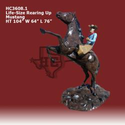 bronc-rider1-color