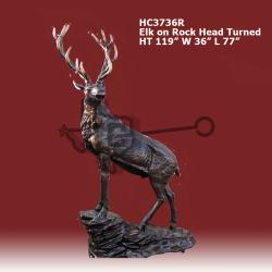elk-on-rock-head-turned