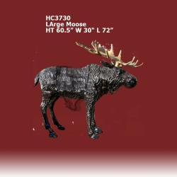 large-moose-color