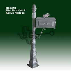 mini-razorback-above-mailbox