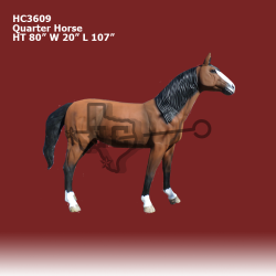quarter-horse-color
