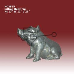 sitting-baby-pig
