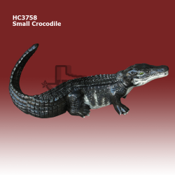 small-crocodile