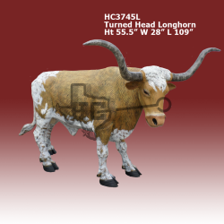 straight-head-longhorn-color-2