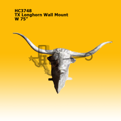 tx-longhorn-wall-mount
